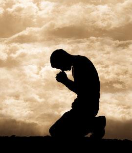 Lutje e Rrezikshme me zgjero